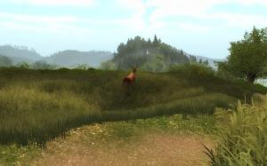 Screenshot Hirsch flieht